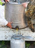 pic of centrifuge  - two beekeepers pour honey out from centrifuge - JPG
