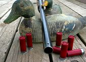picture of duck-hunting  - 12 gauge shotgun resting on antique hand carved duck decoys - JPG