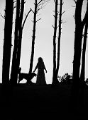Woman And Dog Silhouettes