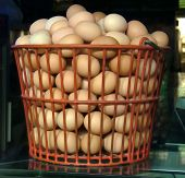 foto of hatcher  - A large basket of fresh eggs sitting on top of a butcher - JPG