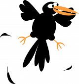 Isolated illustration of funny crow