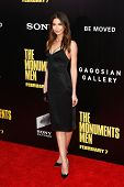 NEW YORK-FEB 4: Model Lily Aldridge attends the premiere of 'The Monuments Men' at the Ziegfeld Theatre on February 4, 2014 in New York City.