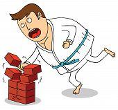 Karate - Breaking Bricks