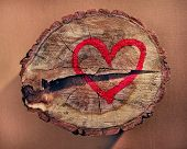 Red heart drawn on a tree trunk
