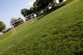 Sunlit Soccer Net