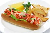 lobster roll sandwich, american food