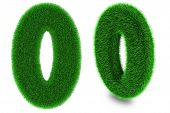 Number Zero Made Of Grass