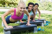 pic of step aerobics  - Portrait of confident sporty women doing step aerobics in park - JPG