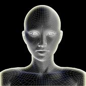 Concept or conceptual 3D wireframe human female head isolated on black background, metaphor to techn