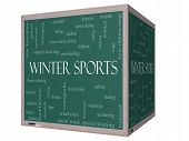 Winter Sports Word Cloud Concept On A 3D Cube Blackboard