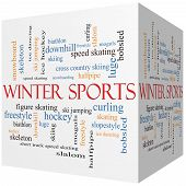 Winter Sports 3D Cube Word Cloud Concept