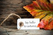 Tag With Say Hello To Autumn