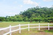 stock photo of olongapo  - a big ranch of wild horses in El Kabayo, Olongapo, Philippines