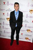 LOS ANGELES - AUG 1:  Adam Irigoyen at the Imagen Awards at the Beverly Hilton Hotel on August 1, 2014 in Los Angeles, CA