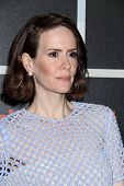 SAN DIEGO - JUL 26:  Sarah Paulson at the Emtertainment Weekly Party - Comic-Con International 2014