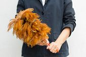 Woman Holding A Feather Duster. Focus On Hand And Duster.
