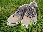 Sneakers In The Grass