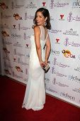 LOS ANGELES - AUG 1:  Ana Ortiz at the Imagen Awards at the Beverly Hilton Hotel on August 1, 2014 i