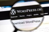 Ostersund, Sweden - August 3, 2014: Close up of Wordpress website under a magnifying glass. WordPres