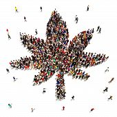 stock photo of medical marijuana  - A Large group of people that support marijuana for medical or recreational uses on a white background - JPG