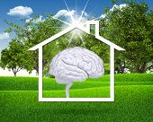 House icon with white brain