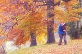 Couple kissing in autumn park on a sunny day. Soft effect. Color toning