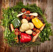 Vegetables And Herbs Nest Arrangement