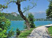 Lake Bled,Triglav National Park,Slovenia