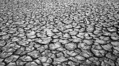 Drought Land, Warming Global