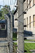 Electrified Barbed-wire Fences In Auschwitz Ii-birkenau Camp In Brzezinka, Poland.