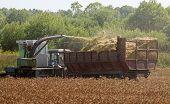 Harvester Combine