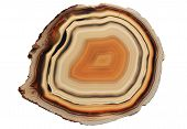 picture of agate  - slice of an agate gem stone isolated on white
