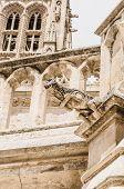 Gargoyle In Burgos