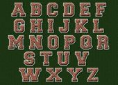 American football textured alphabet with clipping path