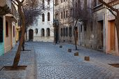picture of tree lined street  - Historic buildings lining the cobbled streets of Barrio Londres in Santiago - JPG