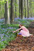 Young woman in pink dress picking bluebells in a springtime forest