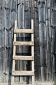 Old wood ladder leaning over a grey wooden wall.