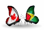 Two Butterflies With Flags On Wings As Symbol Of Relations Canada And Guyana
