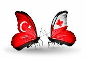 Two Butterflies With Flags On Wings As Symbol Of Relations Turkey And Tonga