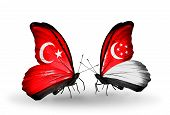 Two Butterflies With Flags On Wings As Symbol Of Relations Turkey And Singapore