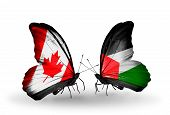 Two Butterflies With Flags On Wings As Symbol Of Relations Canada And Palestine