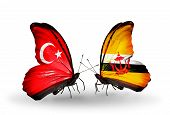 Two Butterflies With Flags On Wings As Symbol Of Relations Turkey And Brunei