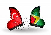 Two Butterflies With Flags On Wings As Symbol Of Relations Turkey And Guyana