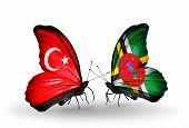 Two Butterflies With Flags On Wings As Symbol Of Relations Turkey And Dominica