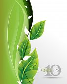 eps10 vector beautiful green leaves on waving elegant business background