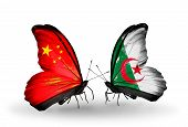 Two Butterflies With Flags On Wings As Symbol Of Relations China And Algeria