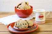 pic of skinny fat  - Skinny low fat chocolate chip cookies on plate - JPG