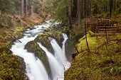 image of olympic mountains  - Sol Duc falls Olympic national park WA US - JPG