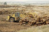 Moving Logs 1