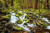 stock photo of olympic mountains  - Beautiful cascade waterfall in Olympic national park WA US - JPG